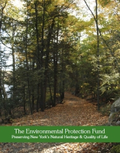 Environmental Advocates of New York EPF Report